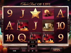 The Finer Reels of Life - Microgaming