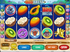 Big Break - Microgaming