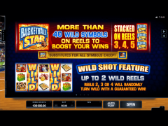 Basketball Star jocuri aparate aparate77.com Microgaming 2/5